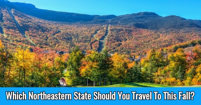 Which Northeastern State Should You Travel To This Fall?