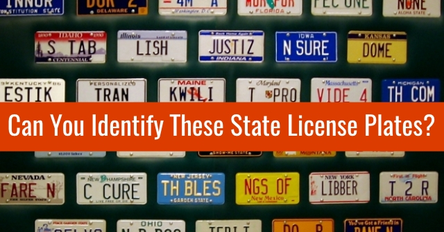 Can You Identify These State License Plates?