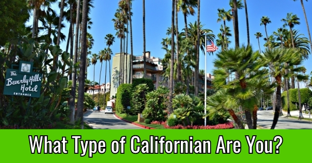What Type of Californian Are You?