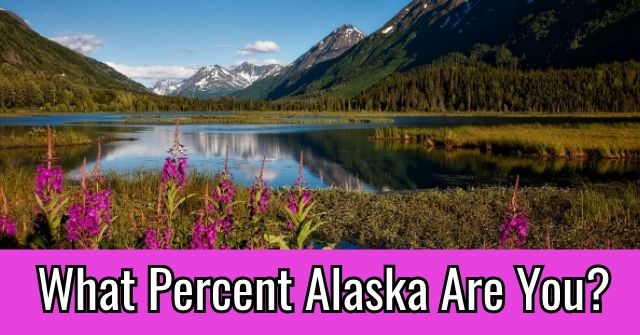 What Percent Alaska Are You?