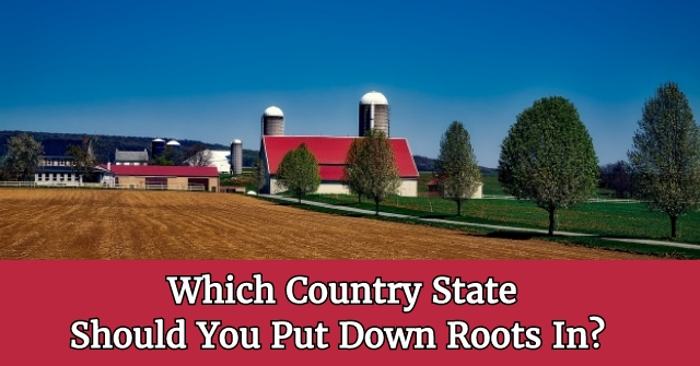 Which Country State Should You Put Down Roots In?