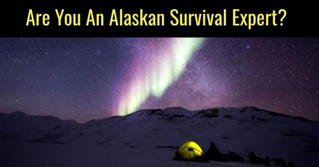 Are You An Alaskan Survival Expert?