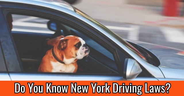 Do You Know New York Driving Laws?