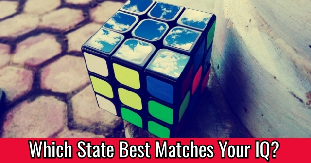 Which State Best Matches Your IQ?
