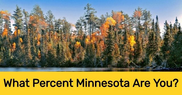 What Percent Minnesota Are You?