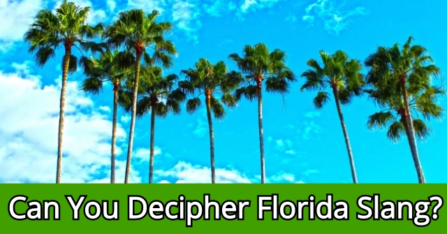 Can You Decipher Florida Slang?