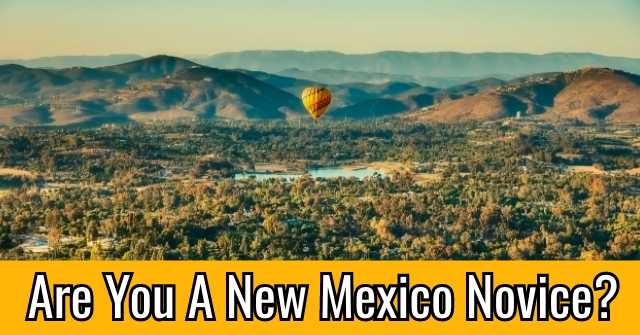 Are You A New Mexico Novice?