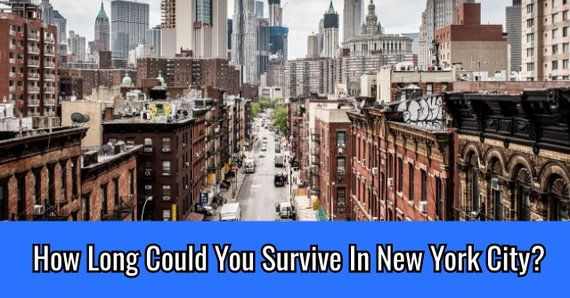 How Long Could You Survive In New York City?