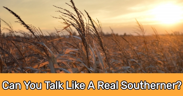 Can You Talk Like A Real Southerner?