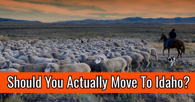 Should You Actually Move To Idaho?