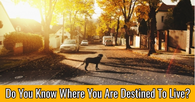 Do You Know Where You Are Destined To Live?
