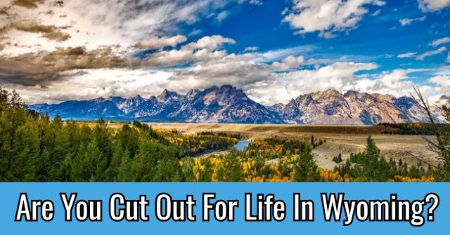 Are You Cut Out For Life In Wyoming?