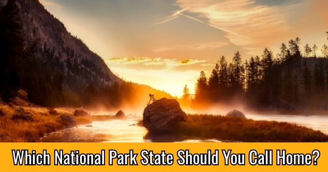 Which National Park State Should You Call Home?