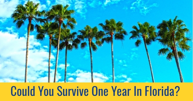Could You Survive One Year In Florida?