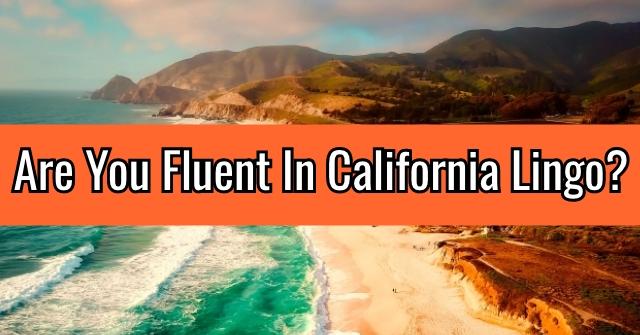 Are You Fluent In California Lingo?