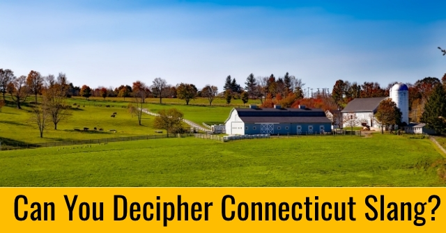 Can You Decipher Connecticut Slang?