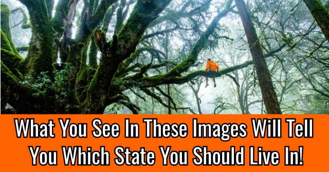 What You See In These Images Will Tell You Which State You Should Live In!