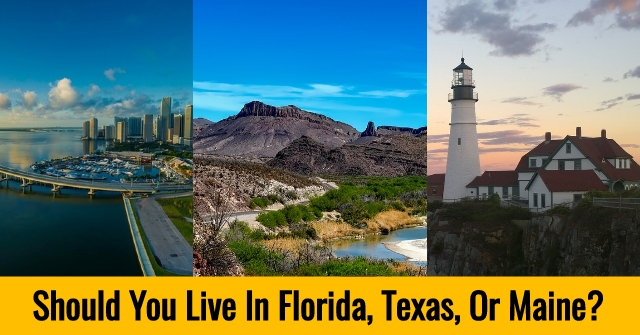 Should You Live In Florida, Texas, Or Maine?