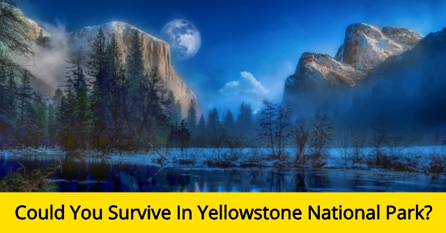Could You Survive In Yellowstone National Park?