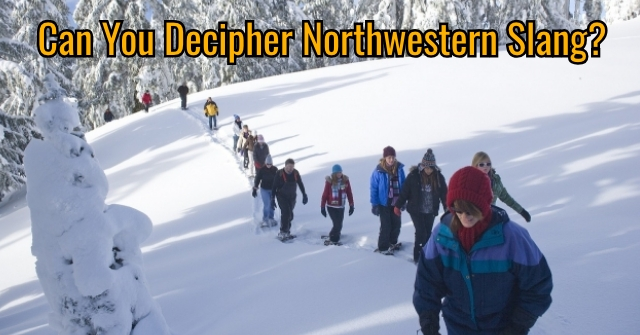 Can You Decipher Northwestern Slang?