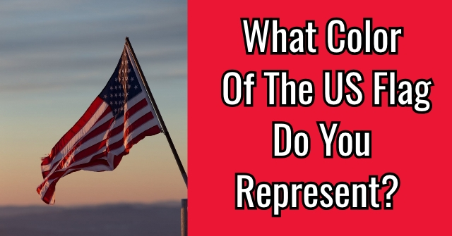 What Color Of The US Flag Do You Represent?