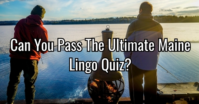 Can You Pass The Ultimate Maine Lingo Quiz?