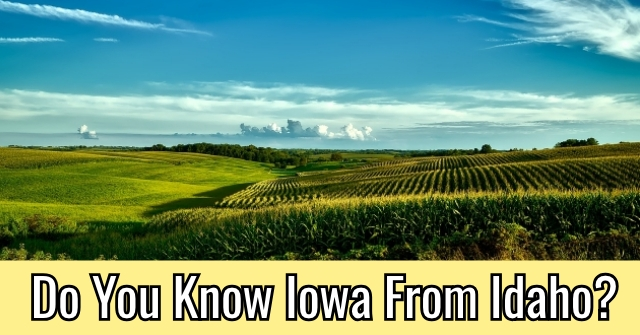 Do You Know Iowa From Idaho?