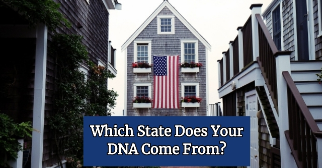 Which State Does Your DNA Come From?