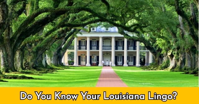 Do You Know Your Louisiana Lingo?