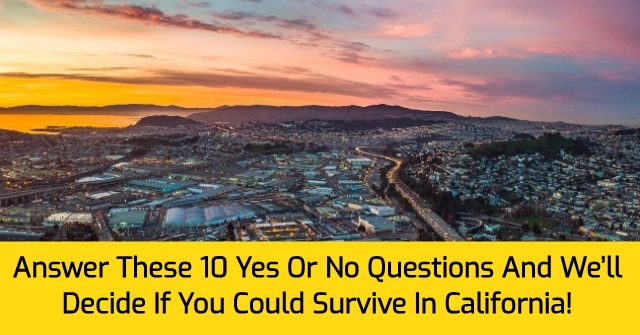 Answer These 10 Yes Or No Questions And We'll Decide If You Could Survive In California!